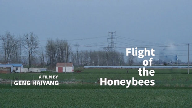 """A picture for the film of """"Flight of the Honeybees"""" directed by Geng Haiyang"""